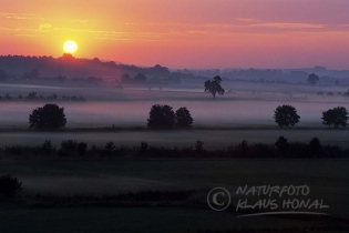 00397 – Sunrise with morning fog over the Woernitz meadows. The Woernitz is a river in Middle Franconia and a tributary to the Danube – Hesselberg region , Bavaria/Germany