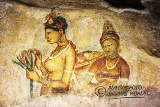 00466 - Frescoes on cave wall. Unique Frescoes of women with bare breasts at the ancient rock fortress of Sigiriya - Sri Lanka