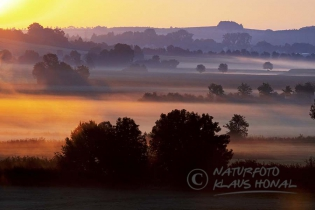 10291 - Sunrise with morning fog over the Woernitz meadows. The Woernitz is a river in Middle Franconia and a tributary to the Danube – Hesselberg region, Bavaria/Germany