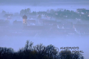 10368 - Aufkirchen a small village of Middle Franconia in early morning fog with view from the mountain - Hesselberg region, Bavaria/Germany